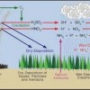 10 Facts about Acid Precipitation