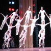 10 Facts about Acrobats
