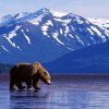 10 Facts about Alaska