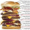 10 Facts about American Burgers