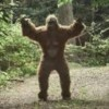 10 Facts about Bigfoot