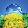 10 Facts about Biodiesel