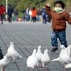 10 Facts about Bird Flu