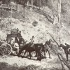 10 Facts about Bushrangers