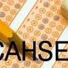 10 Facts about CAHSEE