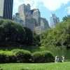10 Facts about Central Park