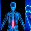 10 Facts about Chiropractic