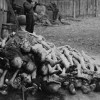 10 Facts about Concentration Camps