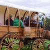 10 Facts about Covered Wagons