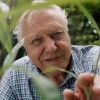 10 Facts about David Attenborough