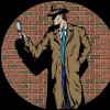 10 Facts about Detectives