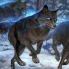 10 Facts about Dire Wolves