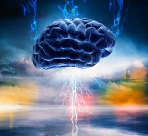 Acetylcholine Brain
