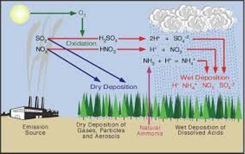 Acid Precipitation Cycle