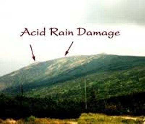 the detrimental effects of acid rains Acid rain is any type of precipitation with acidic components that falls to the ground from the atmosphere it can be wet or dry when nitrogen oxides (nox) and sulfur dioxide (no2) are released into the atmosphere, they react with water and create sulfuric and nitric acids.