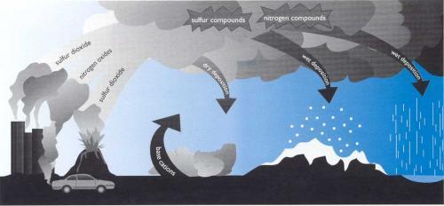 Acid Precipitation Image
