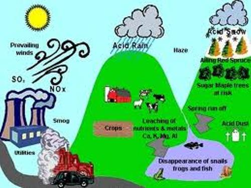 Negative Health Effects of Acid Rain on Humans