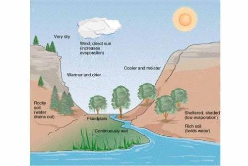 Facts about Abiotic Factors