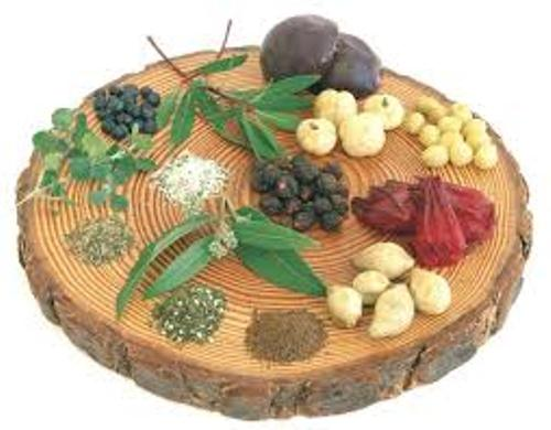 Facts about Aboriginal Food