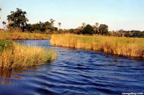 African River View