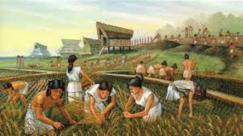 Agricultural Revolution Picture