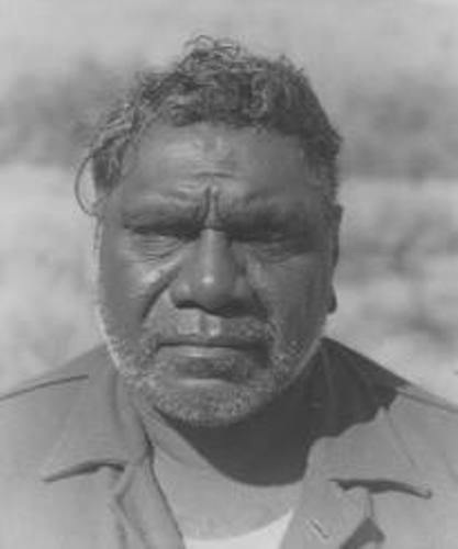 Albert Namatjira Pic