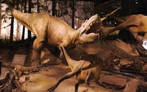 Albertosaurus Facts