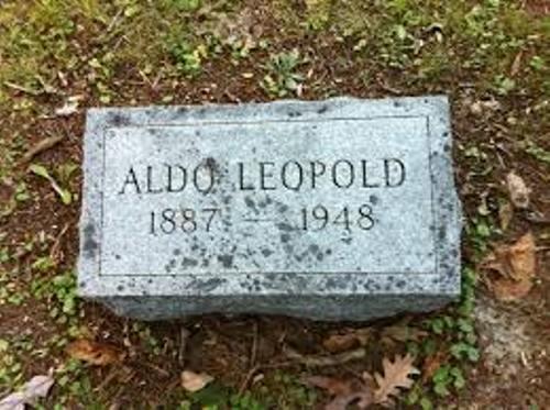 Aldo Leopold Headstone