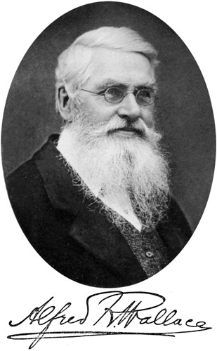 Alfred Russel Wallace Legacy