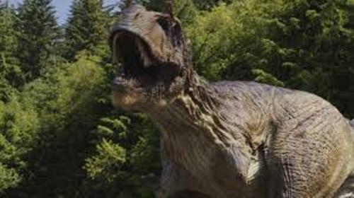 Facts about Albertosaurus