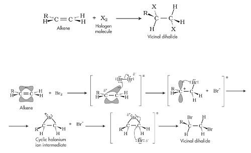 Alkenes Chemistry