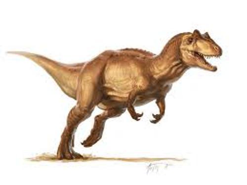 Allosaurus Facts