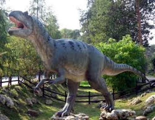 Allosaurus Pic