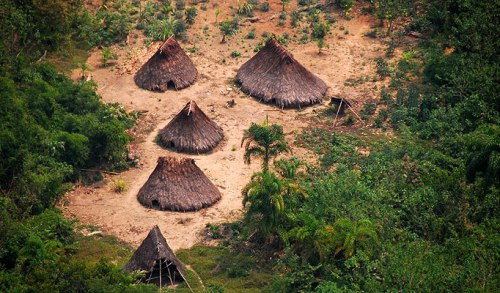 Amazon Tribes Houses