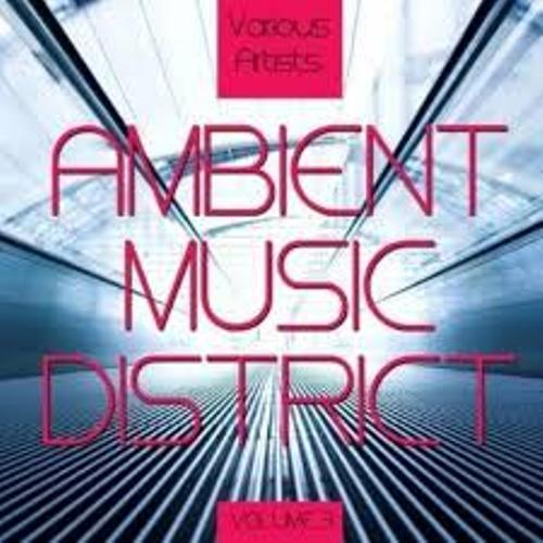 Ambient Music Facts