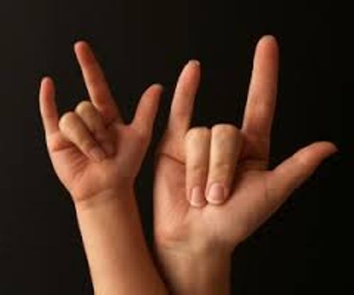 American Sign Language Pic