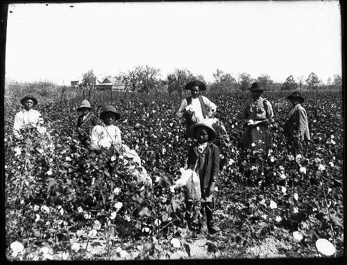 American Slavery Facts