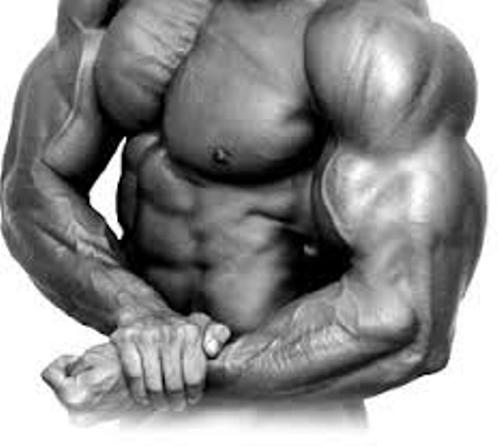 the widespread use of anabolic steroids and its effects on the body We have traced the history of steroids from its beginning all effects of steroids history of steroids by 1967 anabolic steroid use was widespread among.