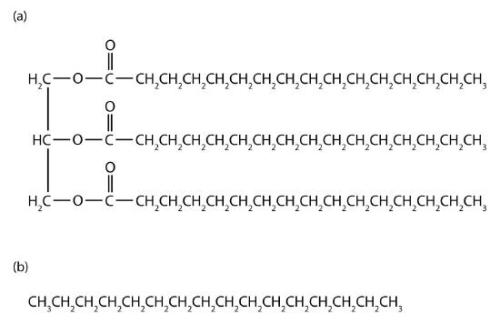 facts about Alkanes
