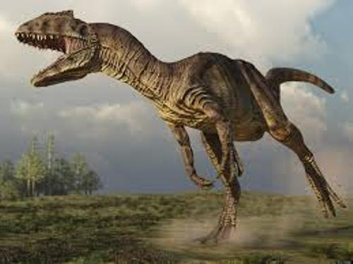 facts about Allosaurus
