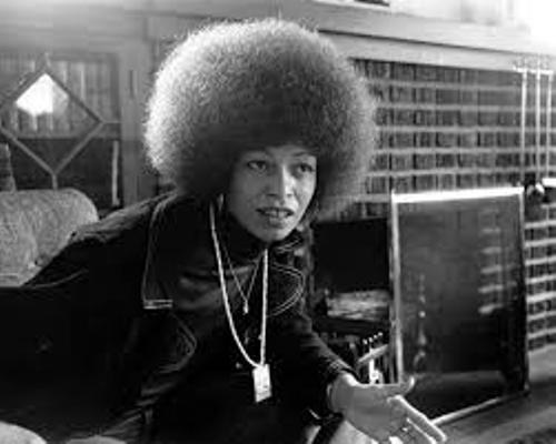 Angela Davis Facts