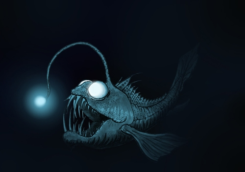 Anglerfish Pic