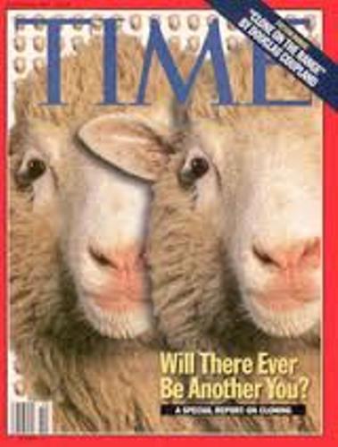 Animal Cloning Dolly