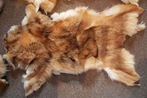 Animal Fur Trade