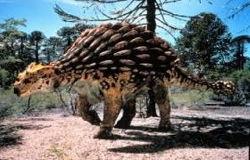 Ankylosaurus Statue
