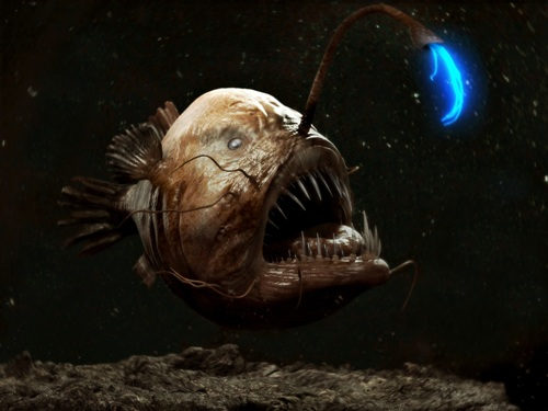 Facts about Anglerfish