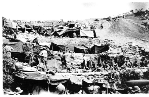 Anzacs Pictures