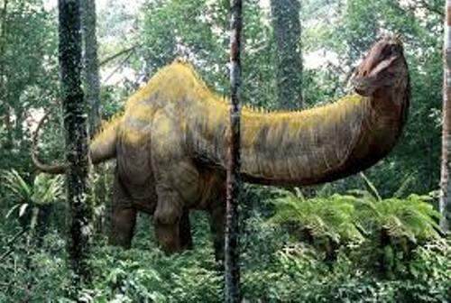 Apatosaurus Facts