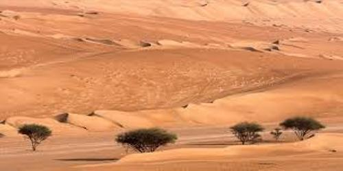 Arabian Desert Facts