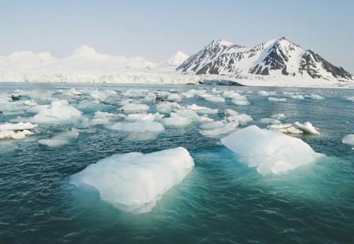 Arctic Pic